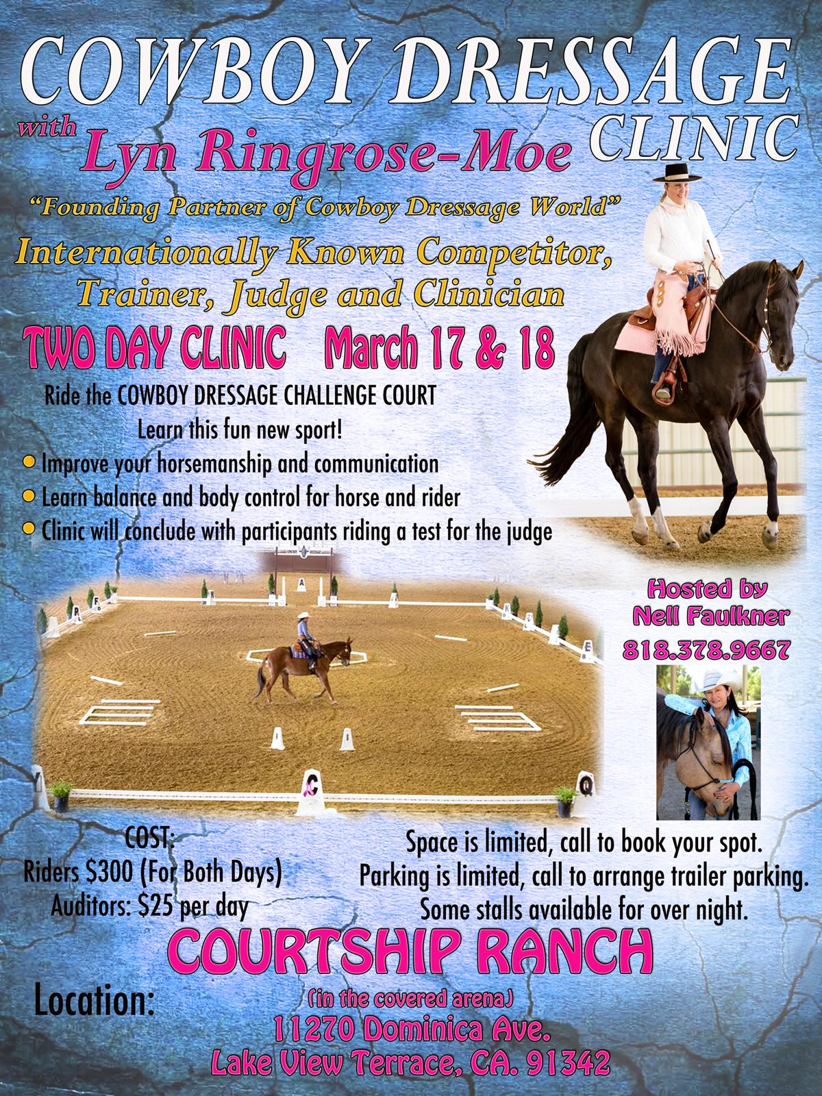 Lyn Ringrose-Moe, Cowboy Dressage, Clinic, Courtship Ranch
