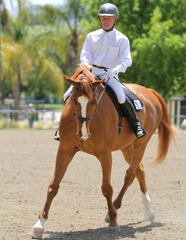 Dale Lawrence Dressage