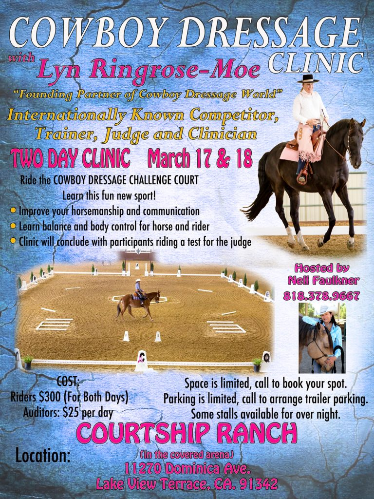Lyn Ringrose-Moe, Cowboy Dressage, Clinic, Courtship Ranch