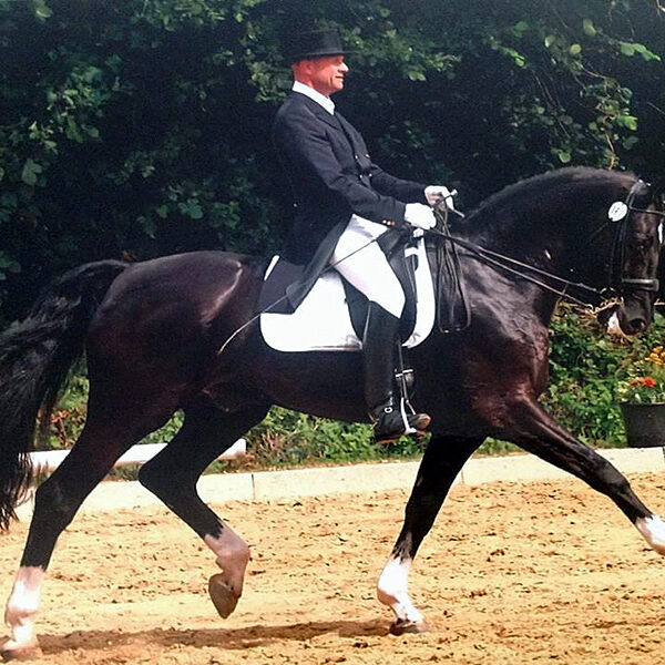 "Kai-Mark Sebastian, dressage, Courtship Ranch, horse boarding, Clinic, ""Riding with Intention"""