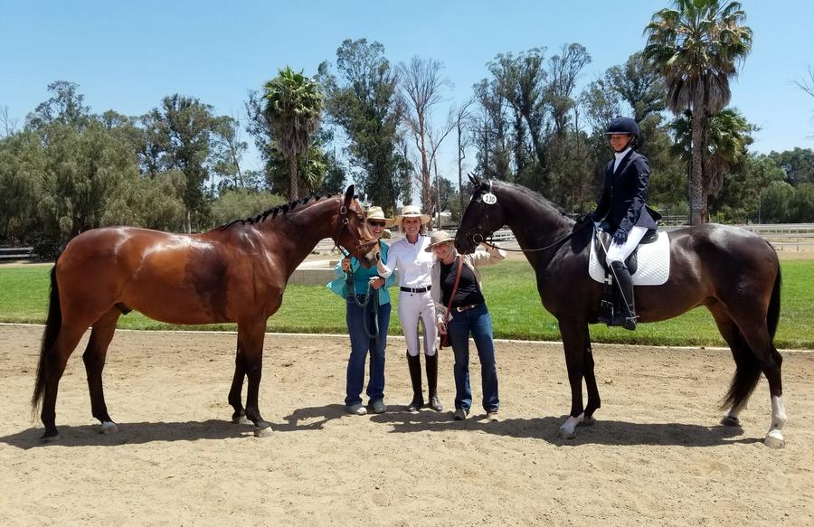 pasadena horse boarding, shadow hills horse boarding