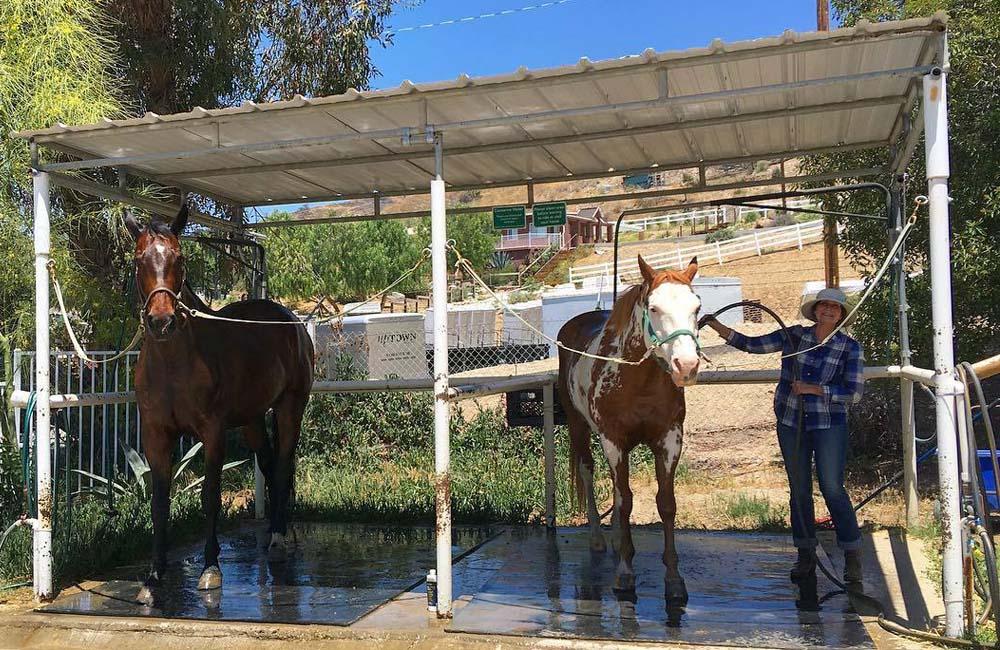 horse stables LA
