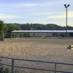 shadow hills horse boarding-4