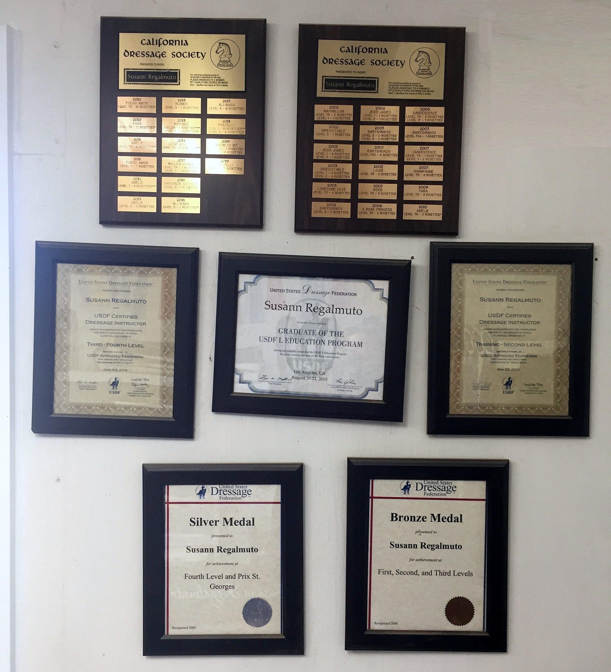 Susann's many achievements
