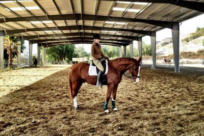 horse boarding in los angeles